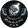 Telemark Karate Logo